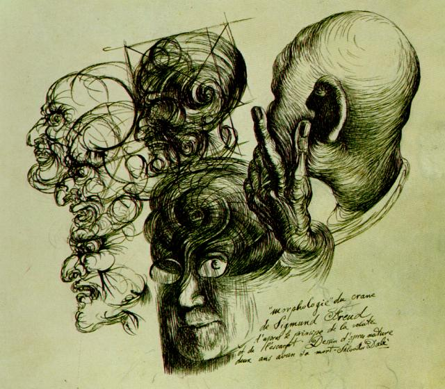 """morphologie"" du crane de Sigmund Freud d'apres le principe de la volute et de l'escargot. Dessin d'apres nature deux ans avan sa mort. Illustration for the first edition of ""The Secret Life of Salvador Dalí"""